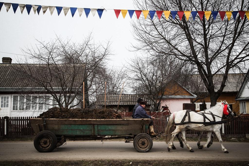 Romania rurala - caruta cu balegar